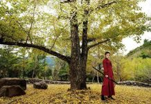Hanfu Complete Your Martial Arts Dream