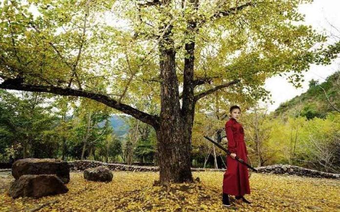 Hanfu Complete Your Martial Arts Dream