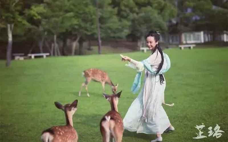Wearing as an angel: Chinese Hanfu in Japan