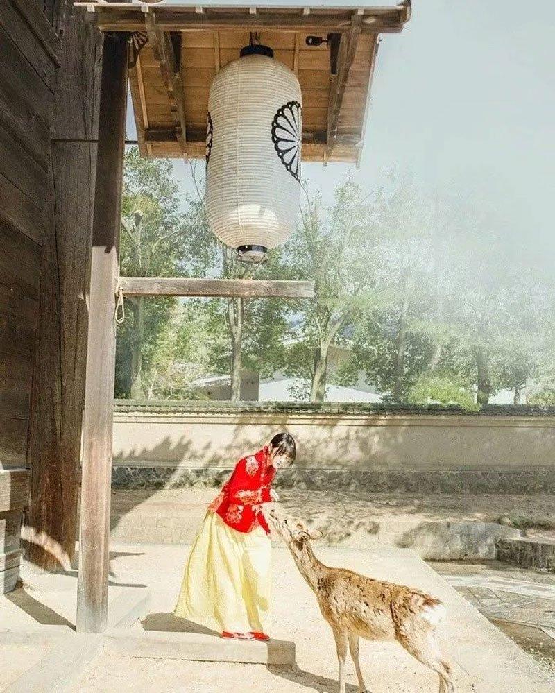 Do You Want Wear Hanfu Travel Around the World japan?