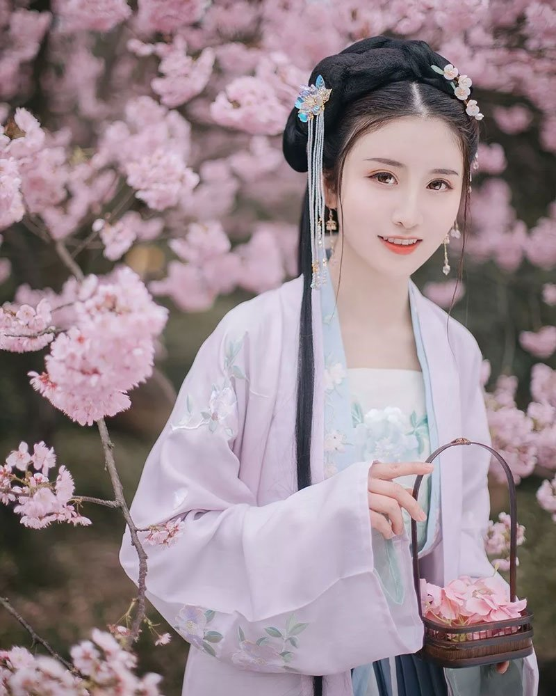 Cherry Blossoms, Hanfu and Girls