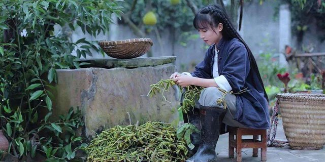 Li-Ziqi as farmer