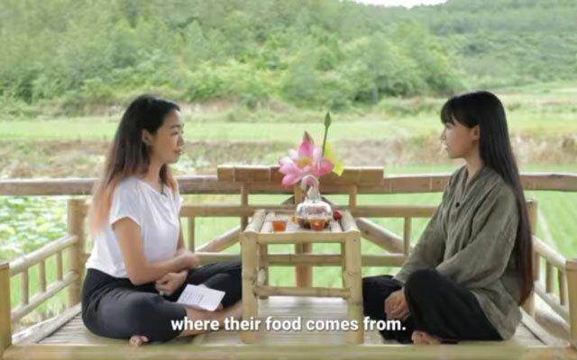 Li Ziqi interview