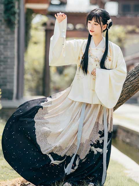 chinese fashion auspicious patterns crane