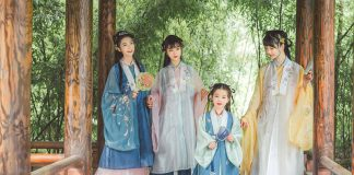 A Brief History of Chinese Outfit for Girl - Bijia (vest)