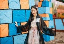 History of Traditional Chinese Attire - Beizi