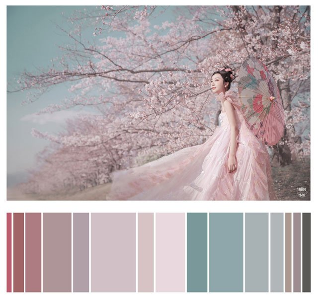 Hanfu Photography | Color Scale Reference