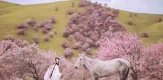 Perfect Combination of Hanfu Clothing & Beautiful Scenery
