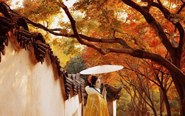 Chinese Costume Photography - Hanfu Girl in Autumn