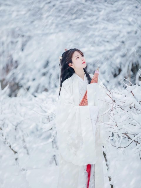 Why Ming Dynasty Hanfu Appropriate for Winter Wear?