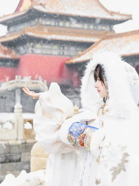 5 Hanfu Accessories for the Cold Winter - Warm & Adorable