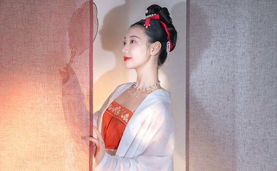 Beauty Oriental Style Top – Fashion from Song Dynasty