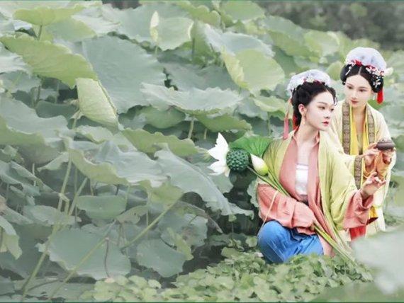 Summer Breeze & Lotus Flower & Beauty Hanfu Girl
