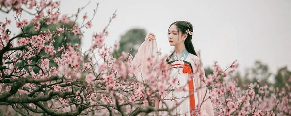 Hanfu in Different Dynasties